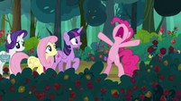 Pinkie Pie stops her friends from going further S8E13