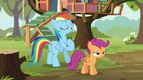 Rainbow Dash -follow in my hoofsteps- S8E20
