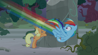 Rainbow Dash flying into the bushes S7E25