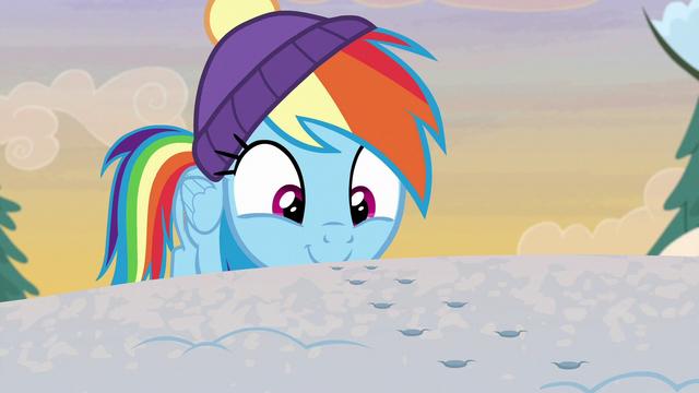 File:Rainbow Dash following winterchilla tracks MLPBGE.png