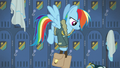 Rainbow Dash picking up her saddle bags S6E24.png
