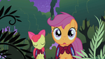 Scootaloo and Apple Bloom in the Everfree Forest S1E17