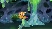 Smolder searching through the caves 8E22