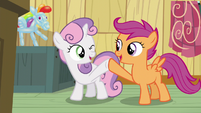 Sweetie Belle and Scootaloo hoof-bump S5E4