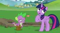 "Twilight ""I should get Rainbow Dash"" S8E24"
