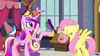800px-Princess Cadance and Fluttershy with birds S2E26