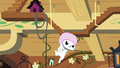 Angel swinging from squirrel habitat S7E5.png