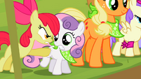Apple Bloom -ONE! DAY! Good Luck!- S2E5