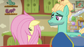 Fluttershy's mane falls flat on her face S6E11.png