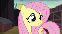 Fluttershy --a cake that says 'Let's be friends!'-- S5E23