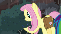 Fluttershy looks at blueberry bush S8E25