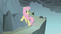 Fluttershy looks at the cliff S1E07