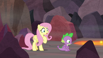 Fluttershy shocked by Spike's revelation S9E9