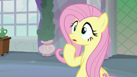 Fluttershy very surprised S8E9