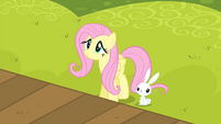 Fluttershy watching S4E14