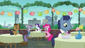 Maud, Rarity, and Pinkie at the dining table; stallion looking sad S6E3.png