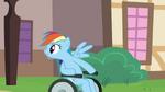 Rainbow Dash Wheelchair Outside S2E16