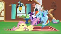 Rainbow Dash dragging Fluttershy S2E21