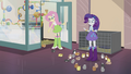 Rarity surrounded by hamsters EG2.png