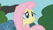 S01E07 Fluttershy próbuje ostrzec Pinkie