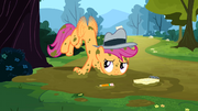 Scootaloo tries to fly S2E23