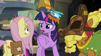 "Twilight Sparkle ""are you sure these are necessary?"" S7E20"