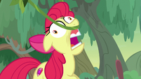 Apple Bloom's muzzle snags on a vine S9E22