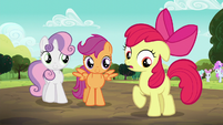 "Apple Bloom ""not exactly"" S5E17"