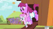 Berryshine and Piña Colada derp S02E05