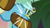 Flash bee stings Meadowbrook's hoof S7E20