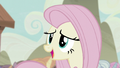 """Fluttershy """"I'd like to lock them in"""" S5E2.png"""