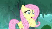 "Fluttershy ""at least no animal is suffering"" S8E18"
