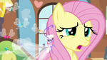 "Fluttershy ""has it been an hour already"" S4E16.png"