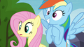 Fluttershy and Rainbow Dash hopeful S4E22.png
