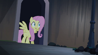 Fluttershy hopeful S4E03