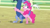 Pinkie Pie 'I was born on a Tuesday' S4E11