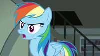 "Rainbow Dash ""why don't we go visit this village"" S7E18"