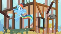 Rainbow Dash evading debris S2E8
