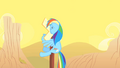 Rainbow Dash hits a sign S01E21.png