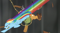 Rainbow swooping past Quibble with rope S6E13