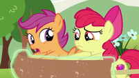 Scootaloo -non-Pegasus ponies fall through the clouds- S7E7