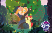 The Perfect Pear Yahoo! TV promotional image