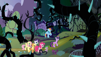 Twilight's friends watching Twilight walking towards the Everfree Forest S4E02