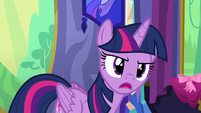 Twilight Sparkle looking disapprovingly S6E6