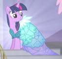 Twiligth Princess Dress