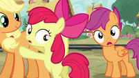 Apple Bloom and Scootaloo worried S03E11