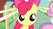 Apple Bloom focus S4E05