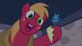 Big McIntosh sings and gives flower to Sugar Belle S7E8.png