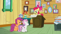 Cutie Mark Crusaders making a list S9E12