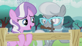 Diamond helps Silver Spoon with fence S5E18.png
